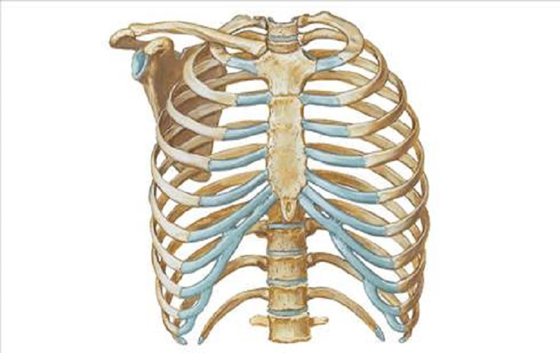 دیه شکستن ، در رفتن و ترک خوردن استخوان دنده